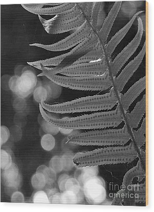 Fern Detail Wood Print