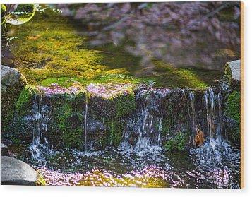 Fern Spring Wood Print by Mike Lee