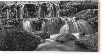 Fern Spring Yosemite National Park Wood Print