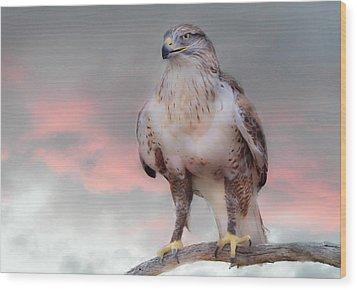 Ferruginous Hawk At Dusk Wood Print by Barbara Manis