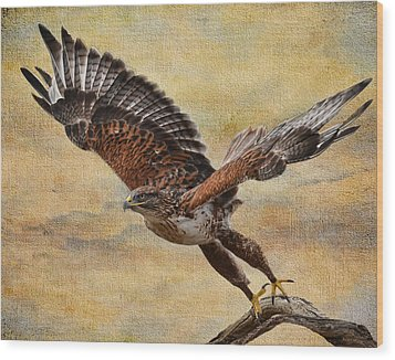 Ferruginous Hawk Wood Print by Russell Dudzienski