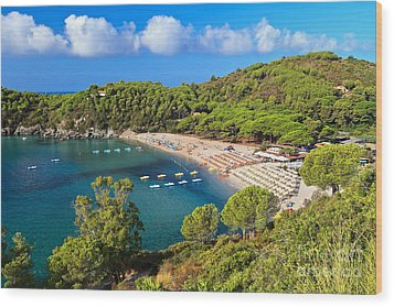 Fetovaia Beach - Elba Island Wood Print
