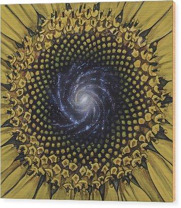 Fibonaccis Mandela V.2 Wood Print by Simon Kregar