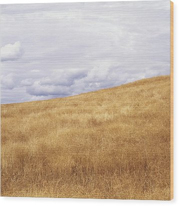 Field And Sky Near Rock Creek, South Wood Print by Bert Klassen