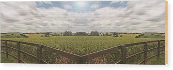 Field And Sky, South England Wood Print by Vast Photography