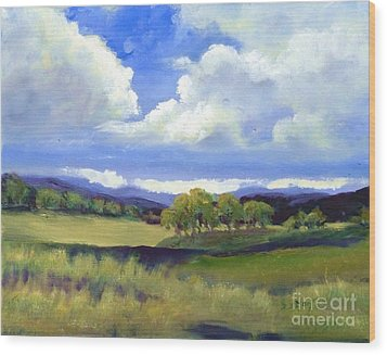 Wood Print featuring the painting Field In Spring by Sally Simon