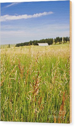 Wood Print featuring the photograph Field Of Brome Grass With Barn by Lincoln Rogers