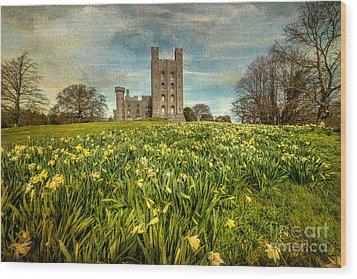 Field Of Daffodils Wood Print by Adrian Evans
