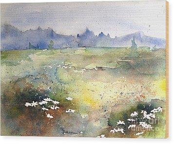 Field Of Daisies Wood Print