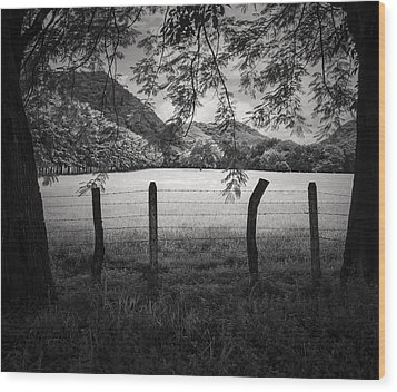 Wood Print featuring the photograph Field Of Dreams by Antonio Jorge Nunes
