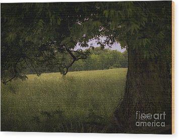 Field Of Dreams II Wood Print by Cris Hayes
