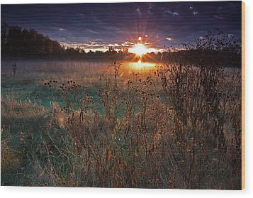 Field Of Dreams Wood Print by Suzanne Stout