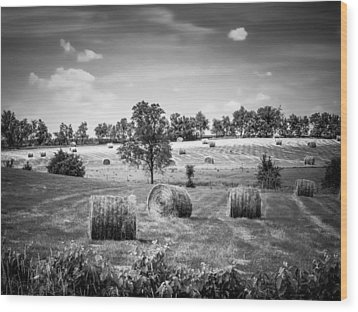 Field Of Hay In Black And White Wood Print