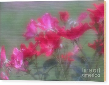 Wood Print featuring the photograph Field Of Roses by Mary Lou Chmura
