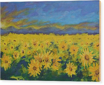 Field Of Sunflowers 2009 Wood Print by Piotr Wolodkowicz