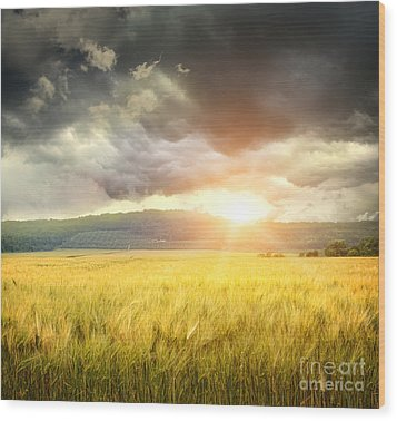 Field Of Wheat With Ominous Clouds  Wood Print by Sandra Cunningham