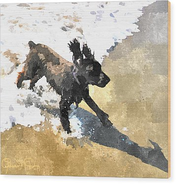 Field Spaniel Joy Wood Print