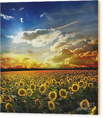 Field With Sunflowers Wood Print by Boon Mee