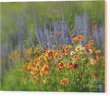 Fields Of Lavender And Orange Blanket Flowers Wood Print by Lingfai Leung