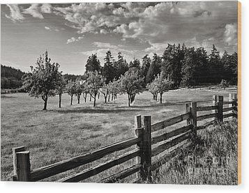 Wood Print featuring the photograph Fields Over Yonder by Maria Janicki