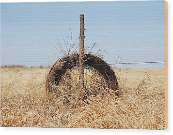 fields That Feed Wood Print by Jerry Cordeiro