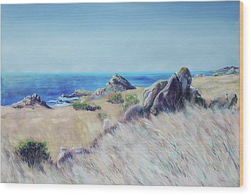 Fields With Rocks And Sea Wood Print by Asha Carolyn Young