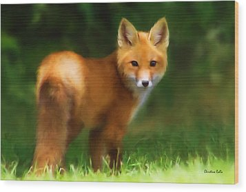 Wood Print featuring the mixed media Fiery Fox by Christina Rollo