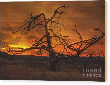 Fiery Sunrise Wood Print