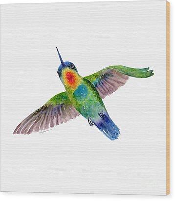 Fiery-throated Hummingbird Wood Print by Amy Kirkpatrick