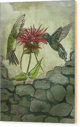 Fight Of The Hummingbirds Wood Print by Alexandria Weaselwise Busen
