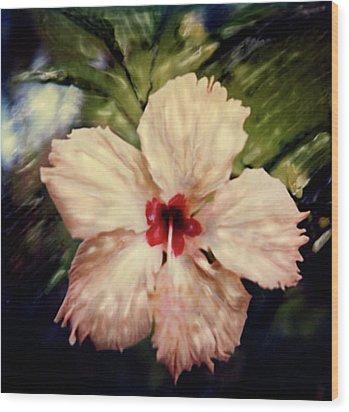 Fiji Magic Wood Print