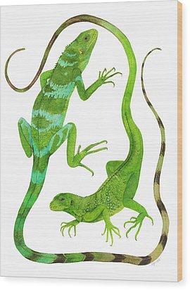 Fijian Iguanas Wood Print