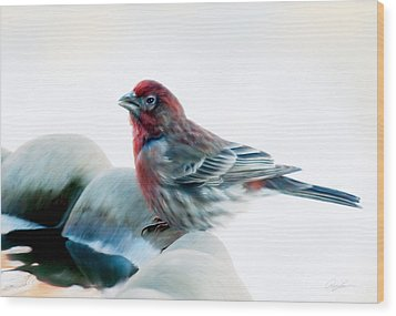 Wood Print featuring the digital art Finch by Ann Lauwers