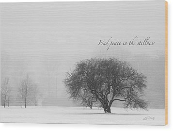 Find Peace In The Stillness Wood Print