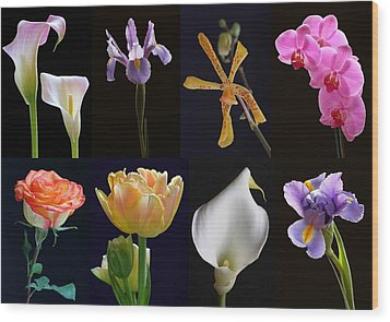Fine Art Flower Photography Wood Print by Juergen Roth