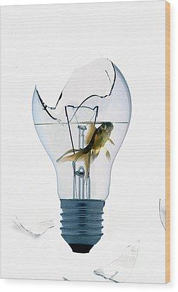 Fine Art Untitled No.28 Wood Print by Caio Caldas