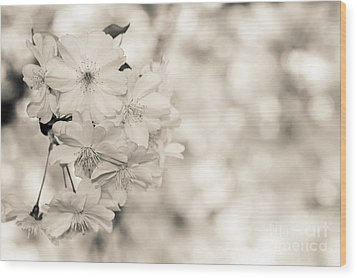 Finest Spring Time - Bw Wood Print by Hannes Cmarits