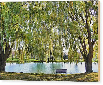 Finger Lakes Weeping Willows Wood Print by Mitchell R Grosky
