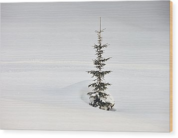 Fir Tree And Lots Of Snow In Winter Kleinwalsertal Austria Wood Print by Matthias Hauser