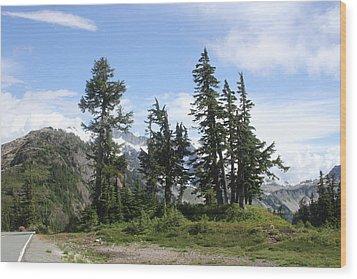 Fir Trees At Mount Baker Wood Print by Tom Janca