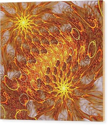 Fire And Flames Wood Print by Anastasiya Malakhova