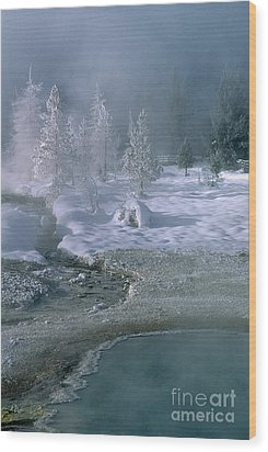 Fire And Ice - Yellowstone National Park Wood Print by Sandra Bronstein