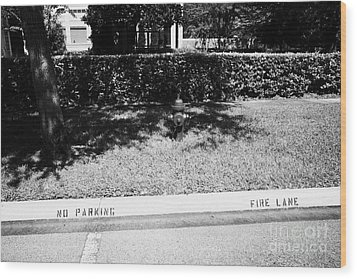Fire Hydrant No Parking Fire Lane Curb In Residential Area Of Celebration Florida Us Wood Print by Joe Fox