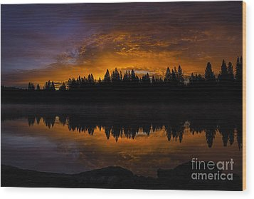 Fire In The Sky Wood Print by Nancy Marie Ricketts