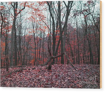 Fire In The Woodland Wood Print