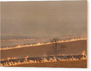 Fire Lines Wood Print by Scott Bean