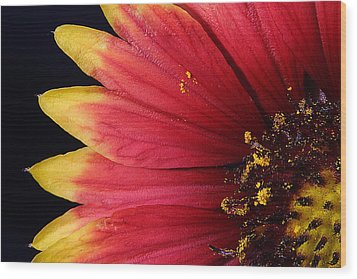 Wood Print featuring the photograph Fire Spokes by Paul Rebmann