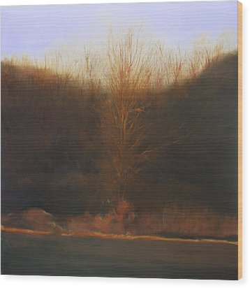 Wood Print featuring the painting Fire Tree by Cap Pannell