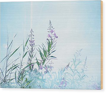 Fireweed Number Two Wood Print by Brian Boyle