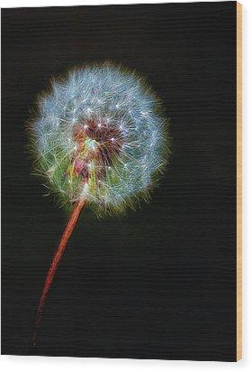 Firework Dandelion Wood Print by Bill Tiepelman